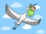 a flying stork carrying a bundle with a newborn baby