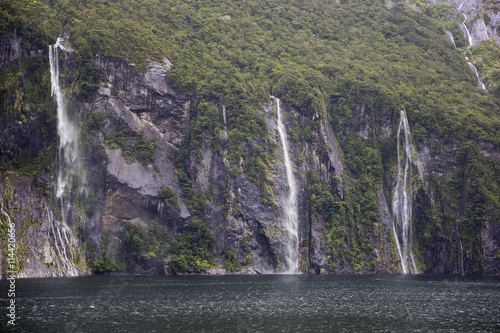 Poster Waterfalls pooring down in Milford Sound.