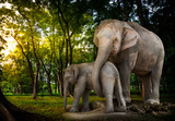The elephant family in forest