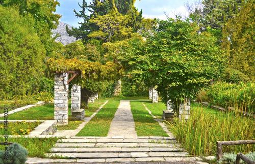 Zdjęcia na płótnie, fototapety, obrazy : Diomides botanical garden of Greece - greek botanic garden