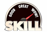 Skill Talent Experience Knowledge Measurement 3d Illustration