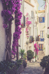 Narrow street in famous village of Cadaques. Spain, Catalonia, Costa Brava.