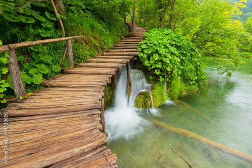 fototapeta na ścianę Plitvice lakes park in Croatia.