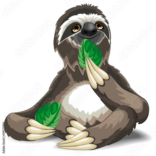 Foto op Canvas Draw Sloth Cute Cartoon Eating a Leaf