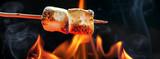 Roasting Marshmallows Over Campfire Horizontal Banner - 114524619