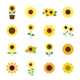 Sunflower icon set