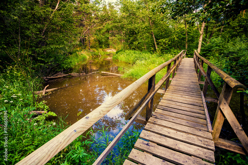 obraz PCV Wooden bridge over brook in the forest