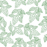 Hops plant seamless pattern, hand drawing style. Hops background. Hops wallpaper. Vector illustration - 114682296