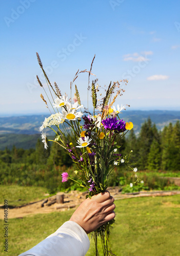 Poster Bouquet of wild flower in woman's hand on mountains background