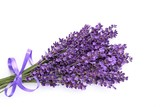 Bunch of lavender. - 114739445
