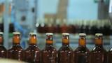 Beer bottles with crown caps