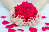 Cupped hands with pink manicured fingernails holding delicate roses