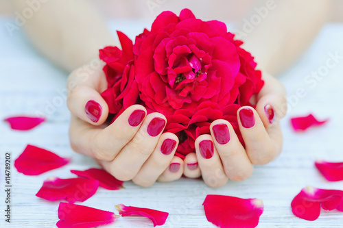 Fotobehang Manicure Cupped hands with pink manicured fingernails holding delicate roses