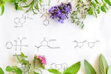 medicinal herbs on science background