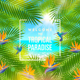 Welcome to summer paradise - Summer holidays and vacation vector illustration. Background with palm tree branches, tropical flowers and hummingbird.