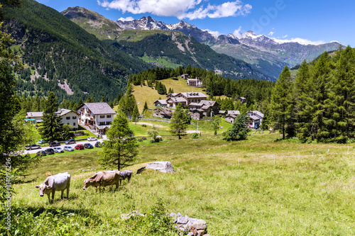 Mountain village and pasture. Val Chiavenna panoramic view.