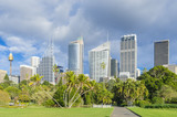 Royal Botanic Garden with cityscape of Sydney, Australia