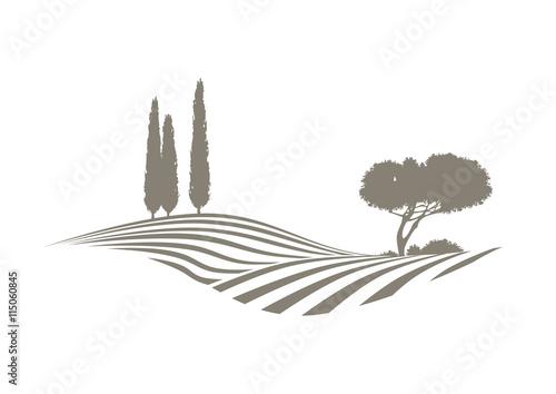 Fotobehang Wit vektor landschaft mit feldern, Zypressen und Kiefer