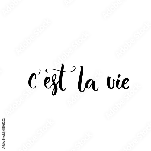 C'est la vie. French phrase means that's life. Brush lettering quote for  fashion clothes and cards.