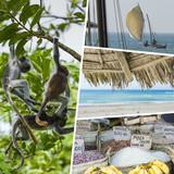Collage of Zanzibar images - travel background (my photos)