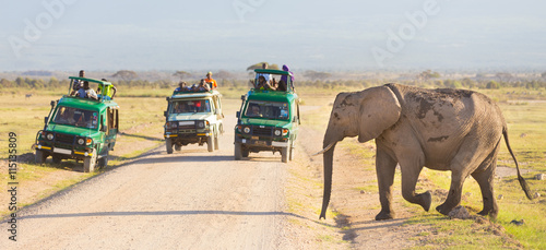 obraz PCV Tourists in safari jeeps watching and taking photos of big wild elephant crossing dirt roadi in Amboseli national park, Kenya. Panorama.