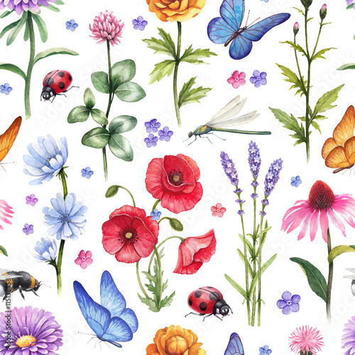 Fototapeta Wild flowers and insect illustrations. Watercolor summer pattern