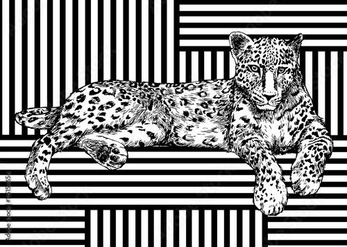 Fototapeta Trendy summer pattern with leopard. Geometric striped ornament tropical animals. Vector tropic predator background.