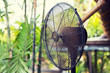 close up of fan outdoors