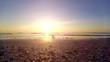 Seestern im Sonnenaufgang - Ostsee (Insel Usedom)