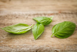 fresh basil leaves on wood