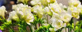 Vibrant flower bouquet of yellow alstroemeria background