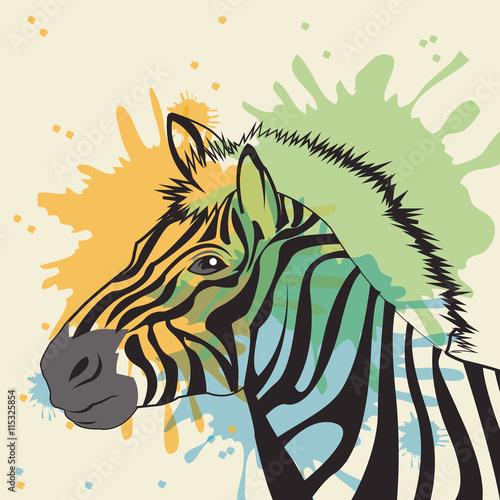Obraz na Szkle zebra icon. Animal and art design. Vector graphic