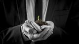 Businessman holding a germinating plant