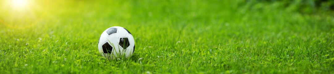 Black and whithe ball lying on green grass in summer