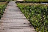 Wooden plank pathway above salty marsh in Nin, Croatia