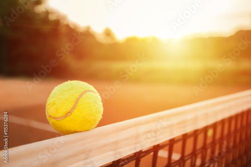 Balle de tennis sur le net Poster