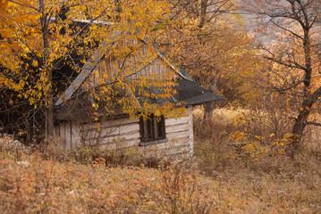 Beskidy jesienią, Skrzyczne