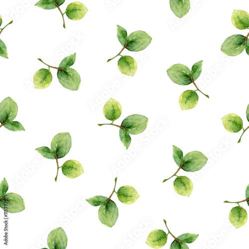 Fototapeta Seamless pattern with green leaves