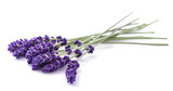 Lavender flowers bunch - 115400828