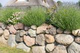Natursteinmauer im Vorgarten