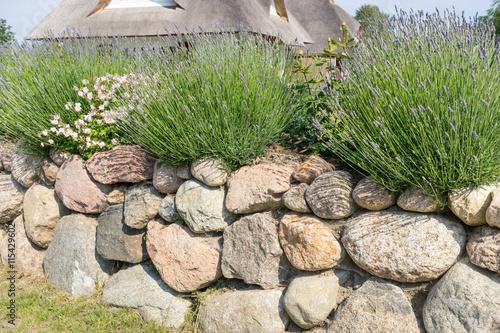 In de dag Baksteen muur Natursteinmauer im Vorgarten