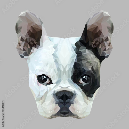 French Bulldog Dog animal low poly design. Triangle vector illustration. © shekularaz
