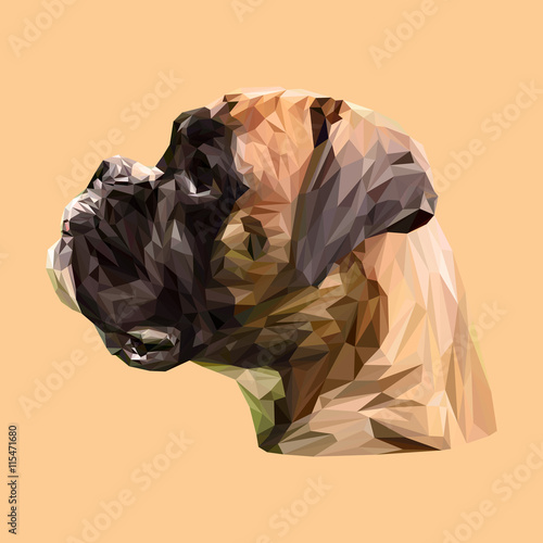 Boxer Dog animal low poly design. Triangle vector illustration. © shekularaz