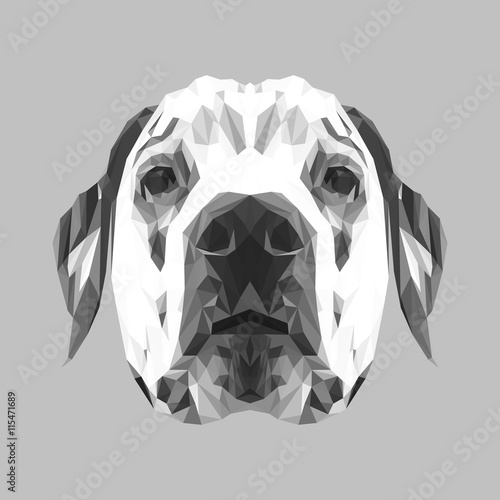 Dalmatian Dog animal low poly design. Triangle vector illustration. © shekularaz