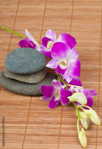 Orchid and spa-stones on wooden background