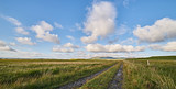 Strada di campagna - Islay, Scozia