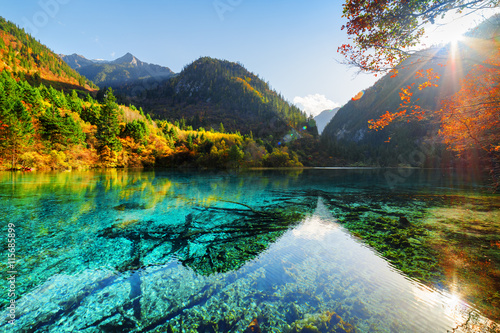 Scenic view of the Five Flower Lake among woods and mountains Poster