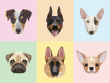 Fototapety Dog breeds portraits vector illustrations in geometric style