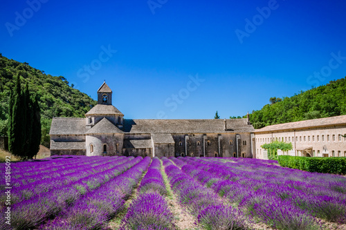 Tuinposter Lavendel Champs de lavandes devant l'Abbaye Notre-Dame-de-Sénanque