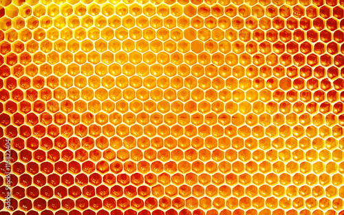 Background texture and pattern of honeycomb - 115822404